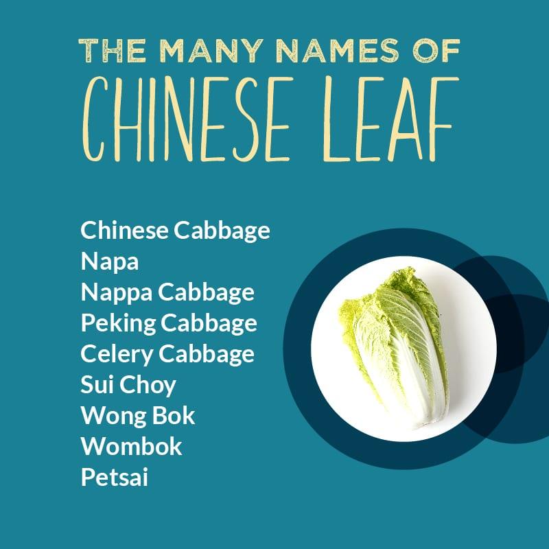 chinese leaf