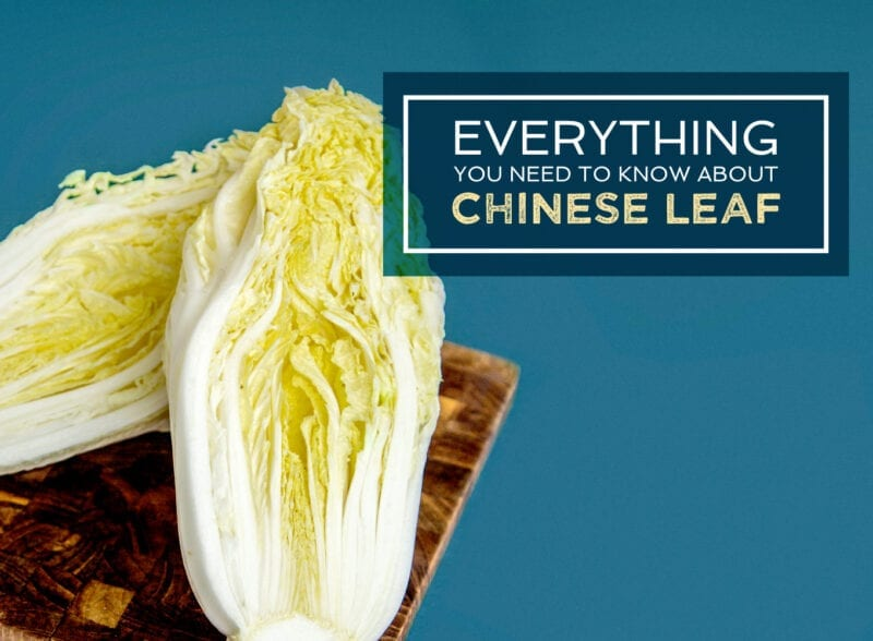 everything you need to know about chinese leaf