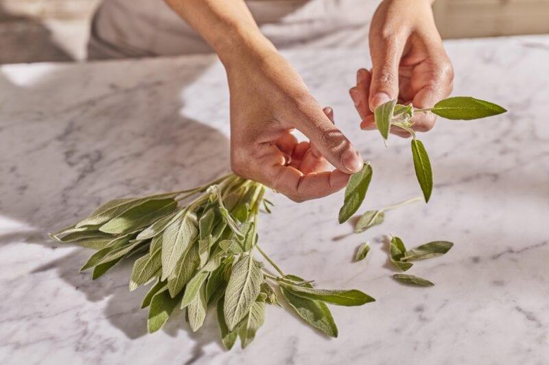 Gousto sage fresh herbs