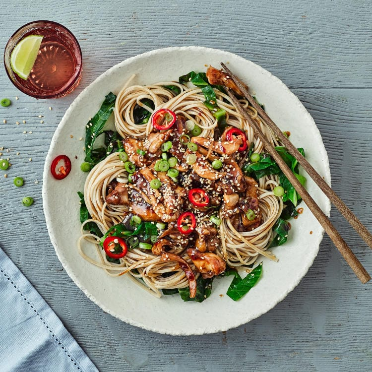 A bowl and chopsticks with pulled chicken stir fry on wholewheat noodles with hoisin sauce, kale and sesame seeds and chillies sprinkled on top.