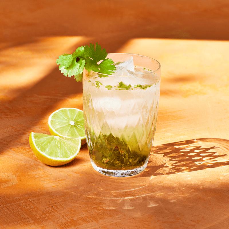 coriander and mint mojito